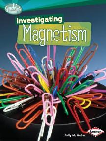 Investigating Magnetism